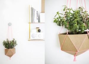 cardboard planter